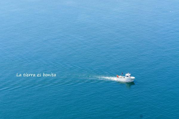 sea17.jpg