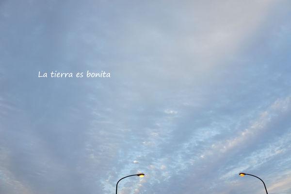sky23.jpg